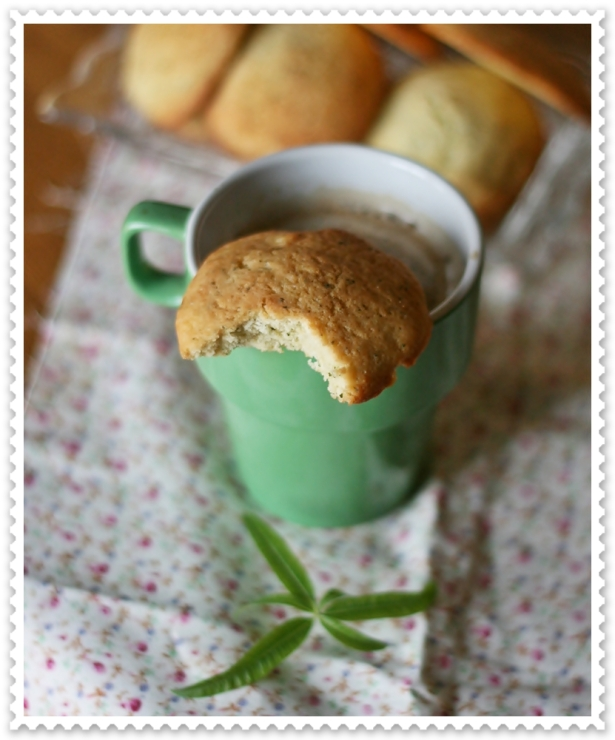 Cookies alla cedrina