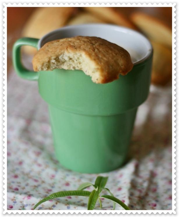 Cookies alla cedrina2