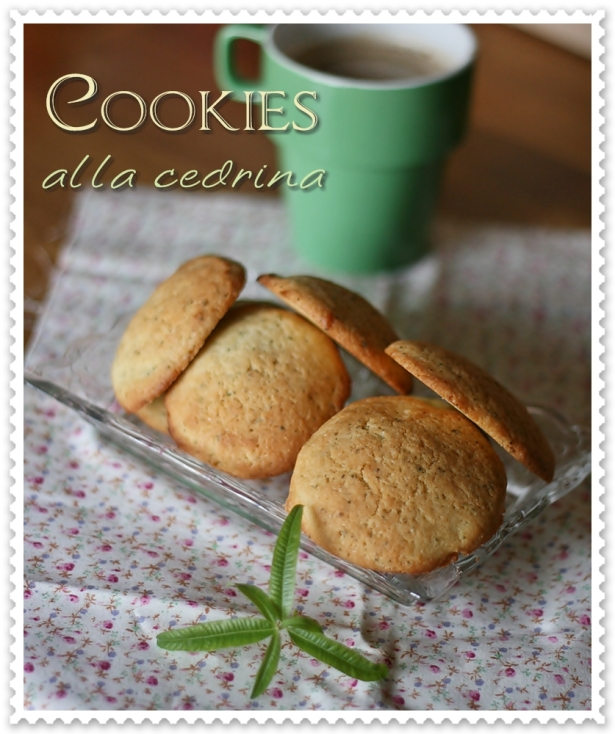 Cookies alla cedrina3