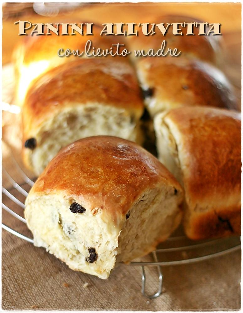 Ricetta Del Pane Con Uvetta.Panini All Uvetta Con Lievito Madre Sweet Sourdough Raisins Rolls Crumpets Co