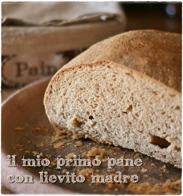 Primo pane pasta madre2
