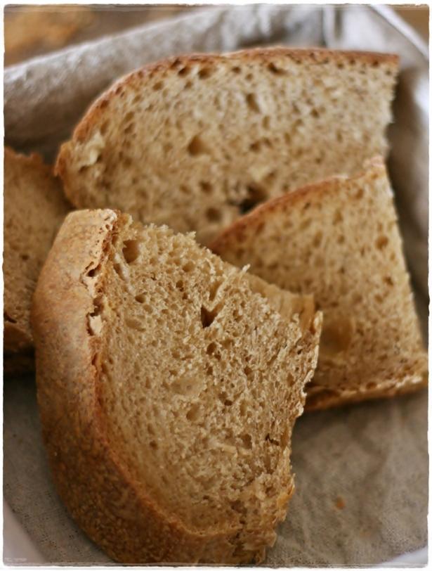 Primo pane pasta madre4