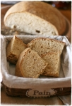 Primo pane pasta madre5
