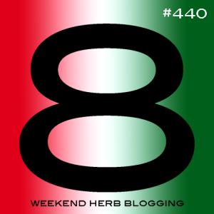 whb440