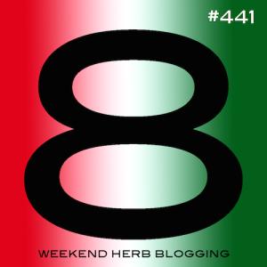 whb441